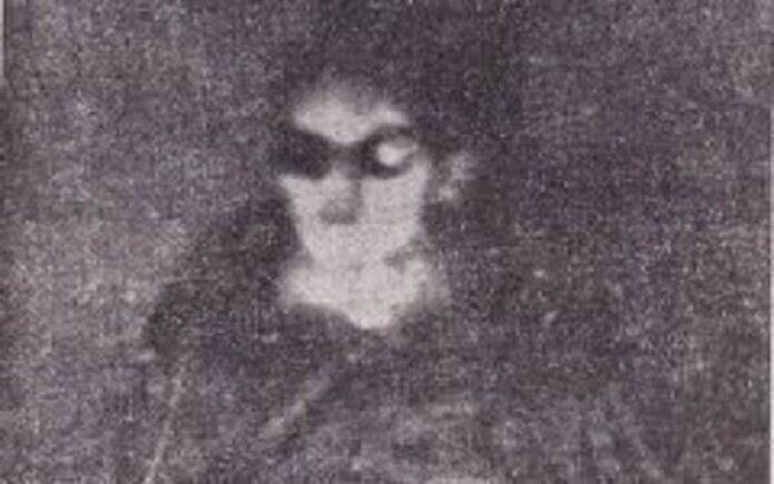 primeras imagenes en el mundo de un extraterrestre dentro de un ovni