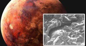 los cientificos han descubierto gusanos en un meteorito de marte