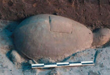 arqueologos descubren un antiguo transmisor de radio de cristal dentro de una tortuga de piedra