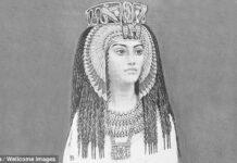 inscripcion egipcia de 4 500 anos advierte inminente colapso de la civilizacion informa arqueologo