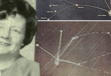 mujer abducida dibuja el mapa exacto una constelacion alienigena