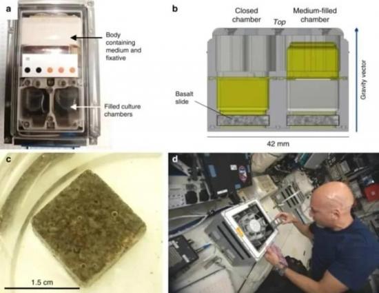 Diseño de reactores biomineros