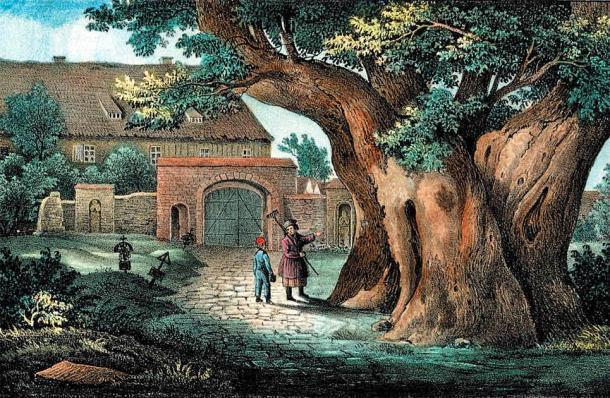 El tilo está fuertemente relacionado con las almas y el dios Veles en el antiguo mito germánico. (Carl Wilhelm Arldt / Dominio público)