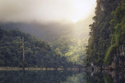 cambio climatico alterara la posicion del cinturon de lluvia tropical de la tierra indica investigacion