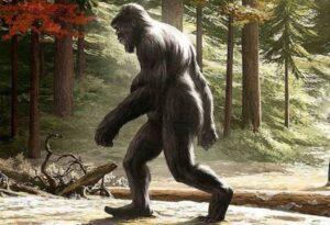 en indiana un turista conocio a un bigfoot con un cachorro en el bosque
