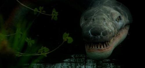 es el monstruo del lago ness una antigua tortuga marina