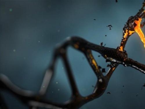 algoritmo genera codigo genetico humano sintetico indistinguible del real