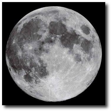 cientificos proponen enviar arca de noe a la luna para preservar la humanidad y otras especies