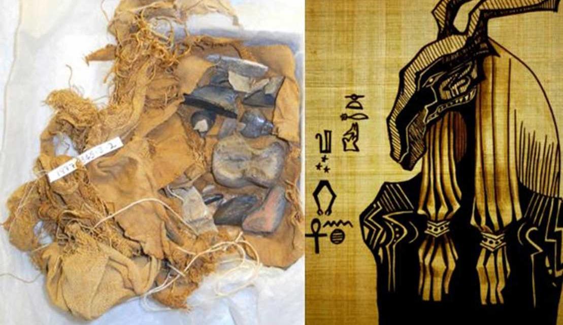 Huesos Negros de Seth: antiguos egipcios recolectaron y veneraron fósiles hace miles de años