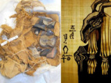 huesos negros de seth antiguos egipcios recolectaron y veneraron fosiles hace miles de anos
