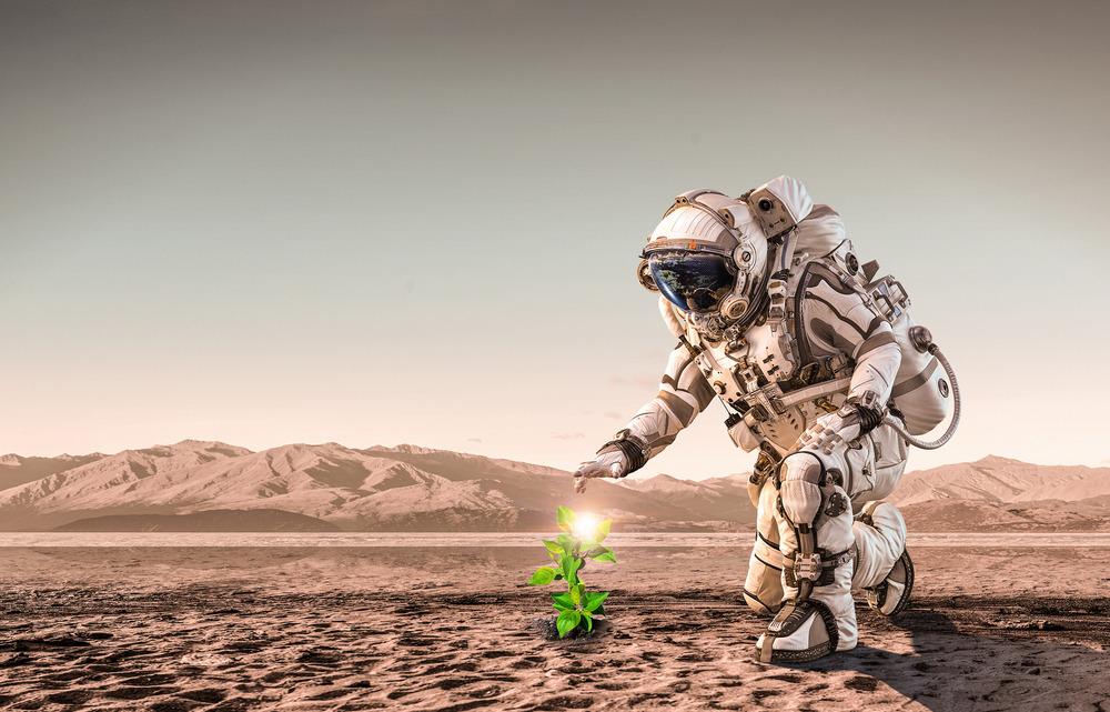 La vida puede estar esparcida por el mundo Marte, dice un investigador