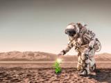 la vida puede estar esparcida por el planeta marte dice un experto