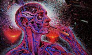 los misterios de dmt puerta de entrada a la realidad otras dimensiones o que
