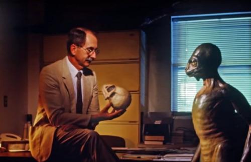 Reptilianos: Conexión Ancestral de la Serpiente de las leyendas viejos a la ciencia moderna