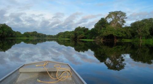 Yacuruna: Enigmáticos entes acuáticos de metrópolis sumergidas