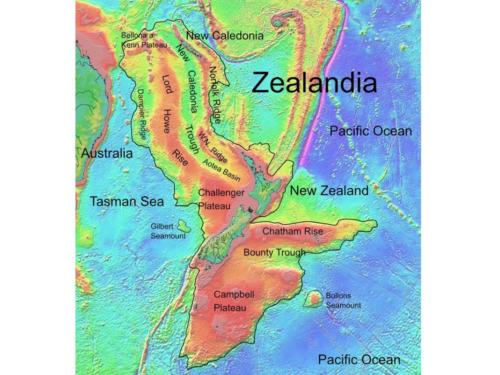 zelandia el continente perdido que fue encontrado luego de casi 400 anos