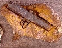El Hombre No fue el Primero: pruebas de culturas terrenales más avanzadas