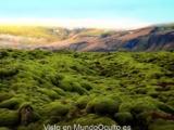 duendes huldufolk