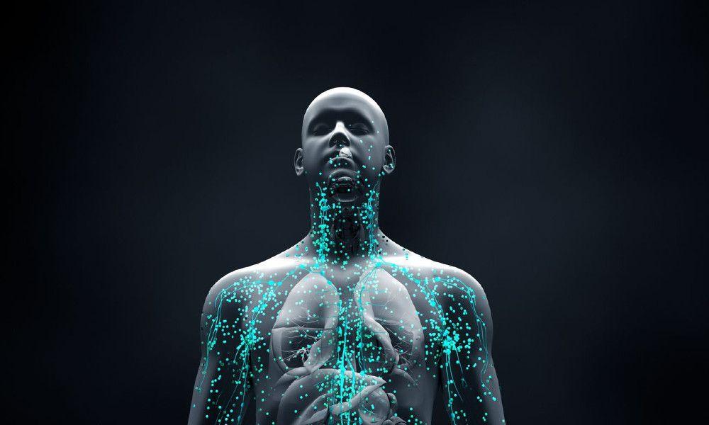 El cuerpo humano podría vivir hasta los 150 años