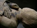 la momificacion egipcia descendio de una tecnica de preservacion mas antigua y quizas reversible