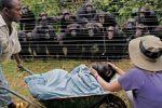 Evidencias de que los animales poseen alma.