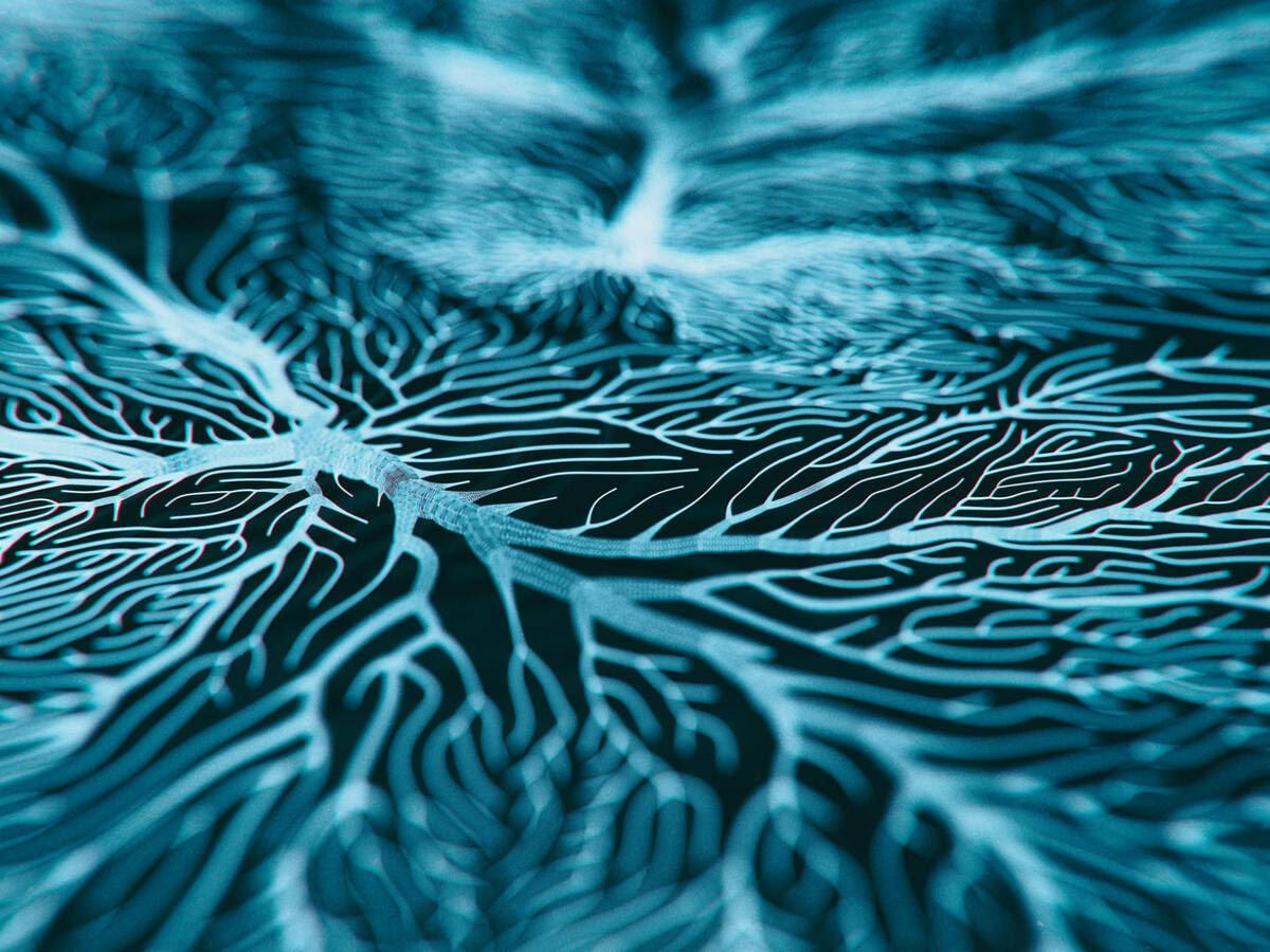 Foto: Ilustración de las dendritas del cerebro