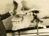 los esqueletos gigantes que desaparecieron en estados unidos