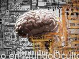 Los Ingenieros De Samsung Copiarán El Cerebro Y Transferirán Datos Al Disco